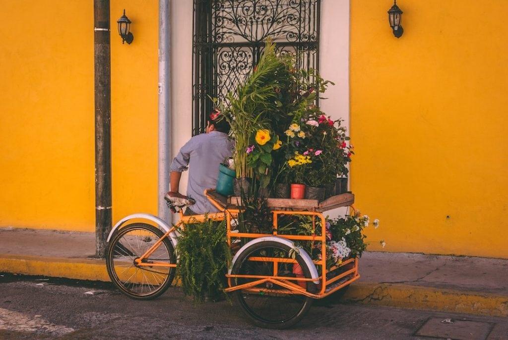 E-Lastenrad mit Blumen